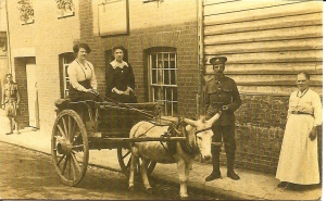 Outside the Old English Gentleman, Gold St. Saffron Walden. Far right: Grandmother Penning. Seated in Cart: (dark dress) Elizabeth Penning, sister of John Francis, Bertie's Landlord., George and William.