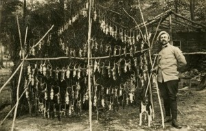 Rats: & Rat catcher WW1.